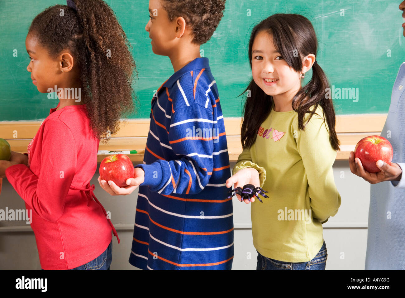 Girl holding spider in line to give apples to teacher - Stock Image