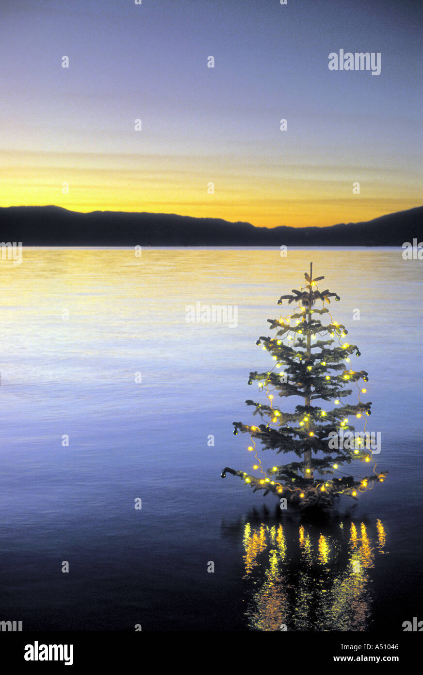 Christmas In Lake Tahoe.Christmas Tree In Calm Water Decorated With Lights Lake