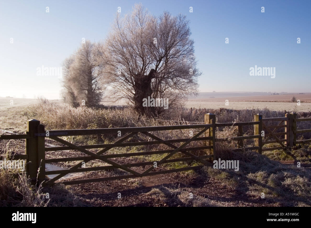 Silhouetted gate to field and two trees covered in fost at Sunrise near Avebury Wiltshire 2005 Stock Photo