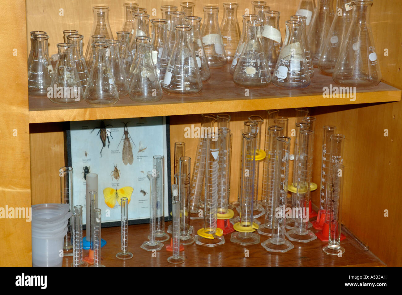 Glassware flasks beakers cylinders on shelves in school biology classroom - Stock Image