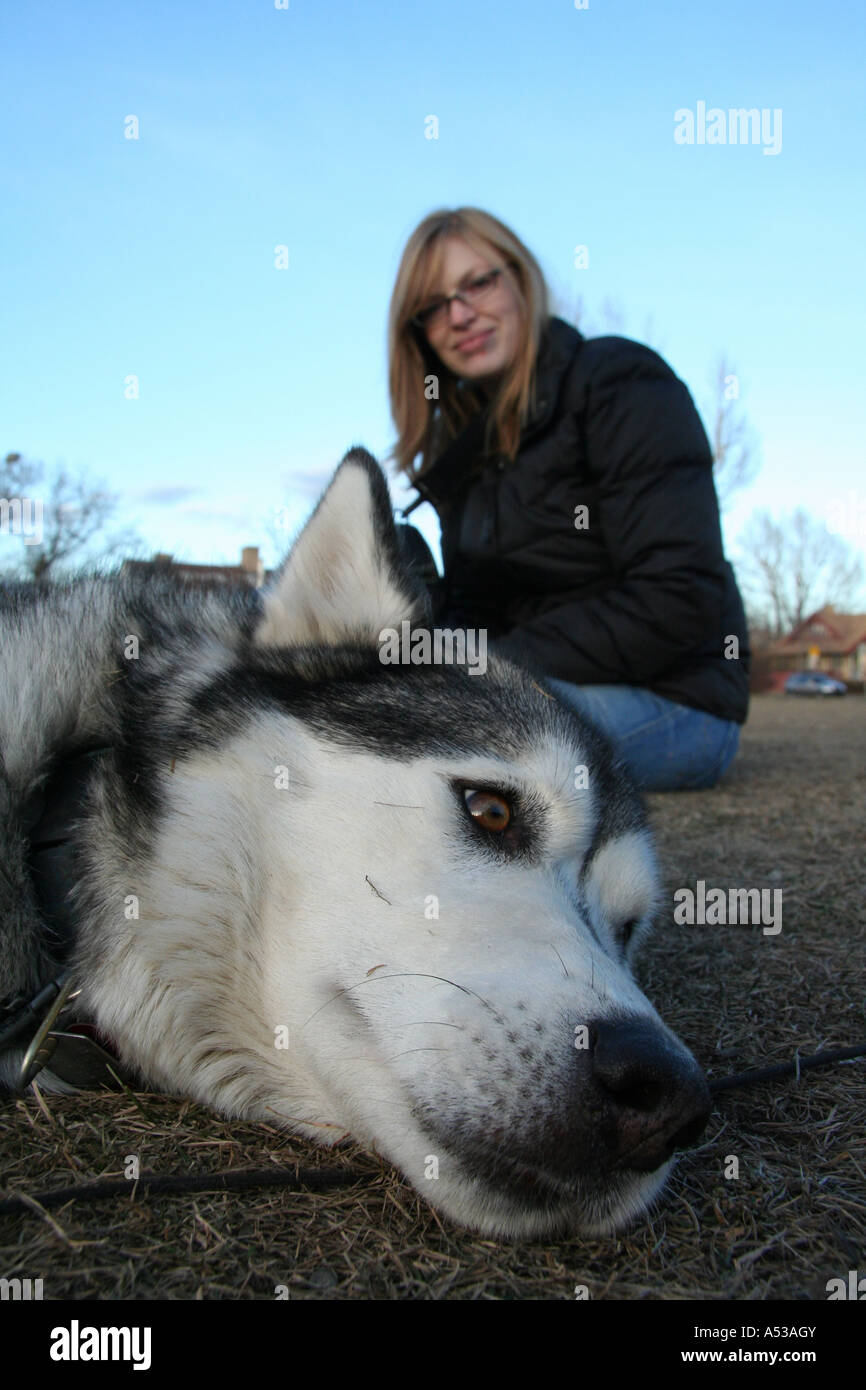 Portrait: Wolfe (siberian husky) & Rebecca in the Dog Park - Stock Image