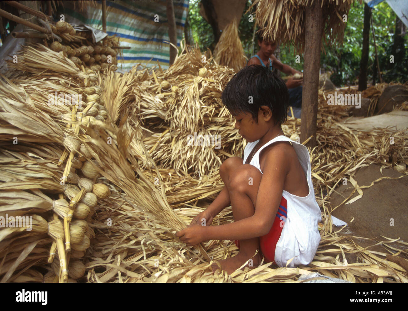 Painet Ha2174 4396 Philippines Boy Making Handicrafts Anaho Fibre