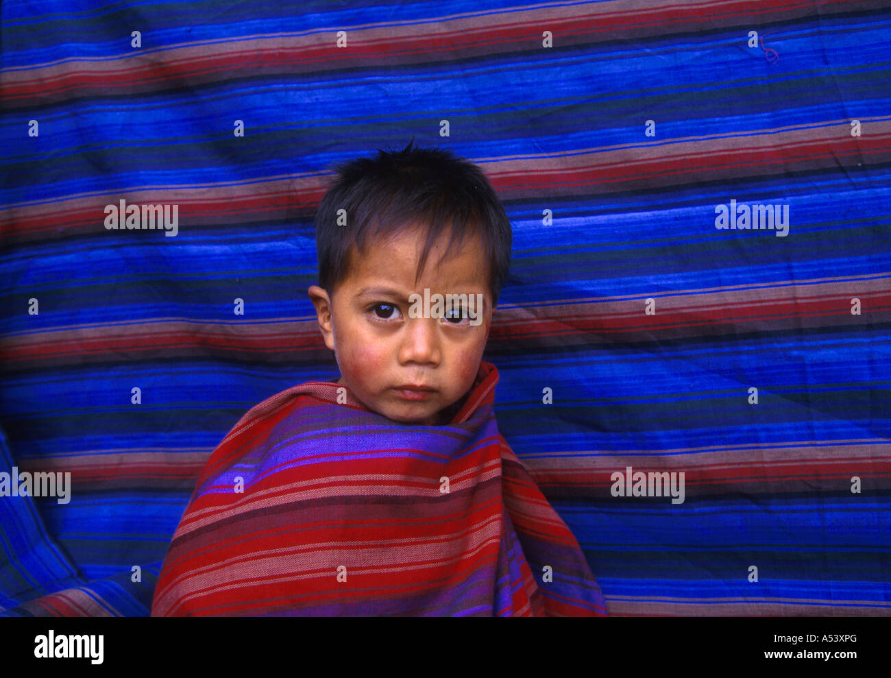 Painet ha2289 5111 guatemala children boy quetzaltenango posed cloth woven by father country developing nation less - Stock Image