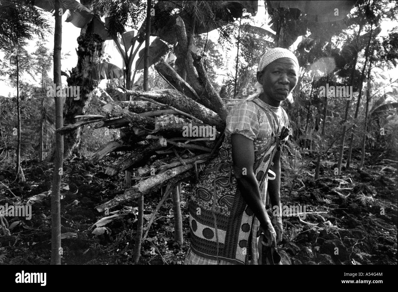 Painet hq1418 black and white environment woman carrying firewood meru kenya images labour smile stress tired women - Stock Image