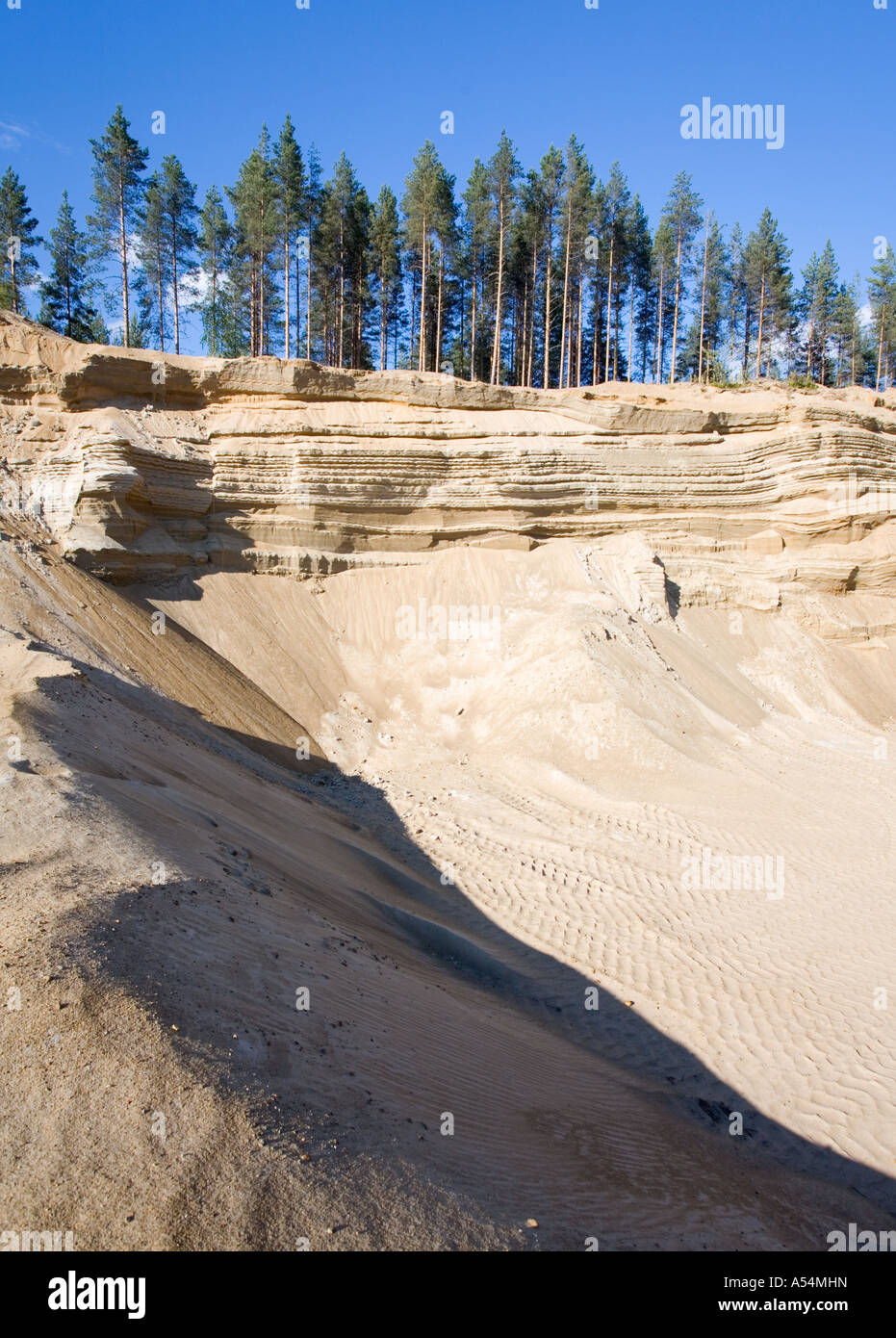 Wall of a sandpit in a sandy ridge esker  , Finland - Stock Image