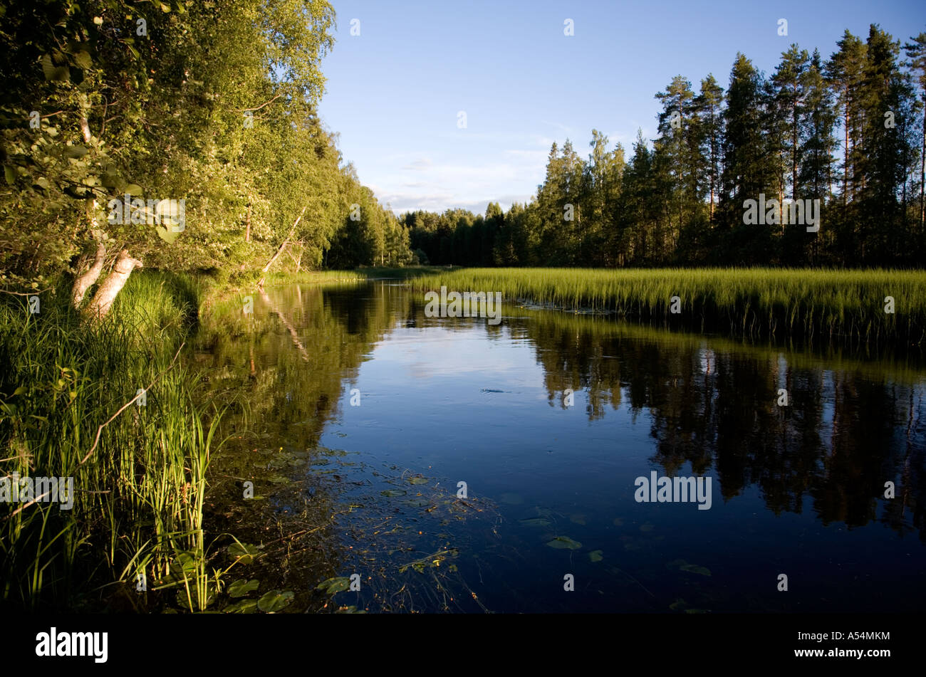 View of a small slow flowing river at evening light , Finland - Stock Image