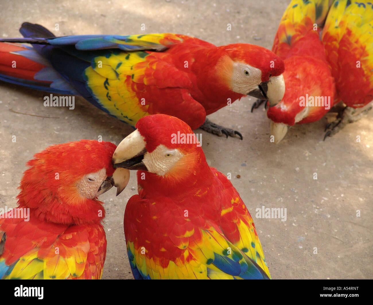 Unpretended Stock Photos & Unpretended Stock Images - Alamy