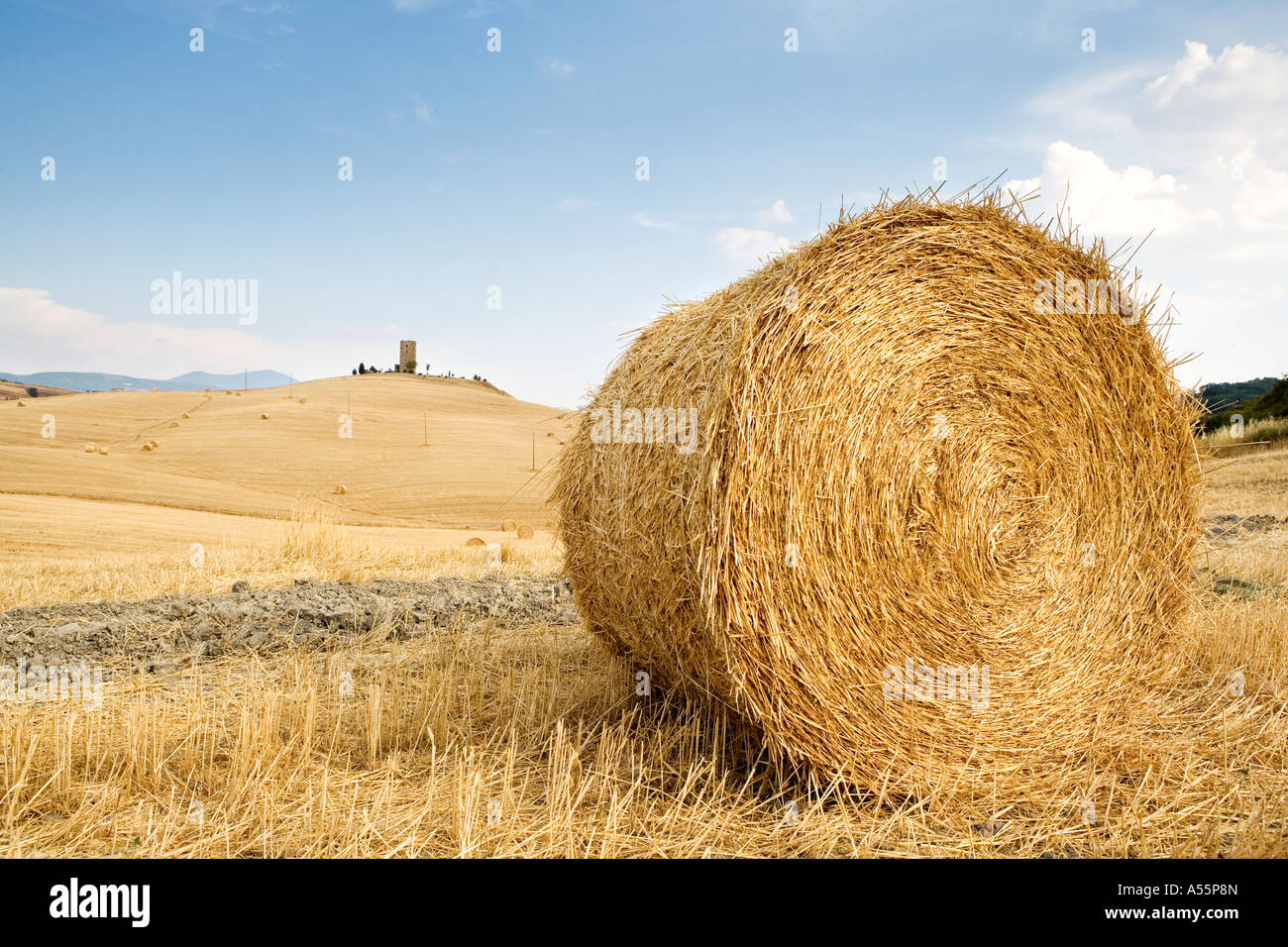 Round hay bales and distant tower Near Pienza Southern Tuscany Italy - Stock Image