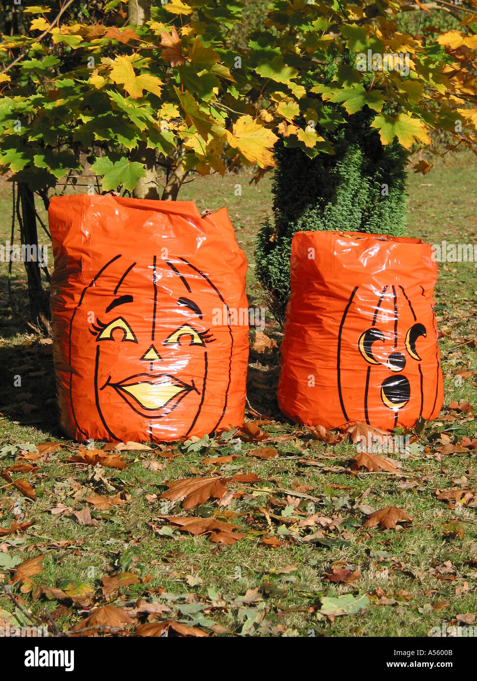 Pumpkin Plastic Bag Figures full with leaves Fall Autumn Colors Halloween ef0421f54