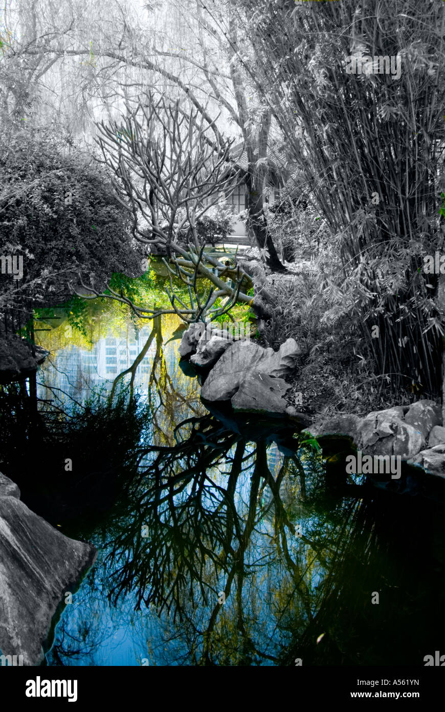 digitized version of wooded stream inside the Chihnese Friednship Garden near Darling Harbor in Sydney Australia - Stock Image