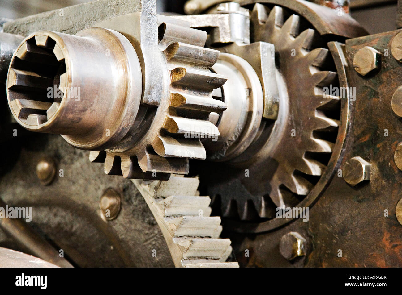 Gears, close-up - Stock Image