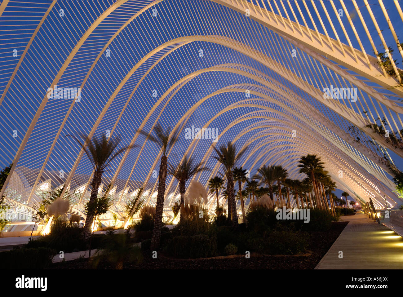 Dusk in contemporary 21st century Architecture . Gardens in the City of Arts and Sciences on the old Turia river - Stock Image