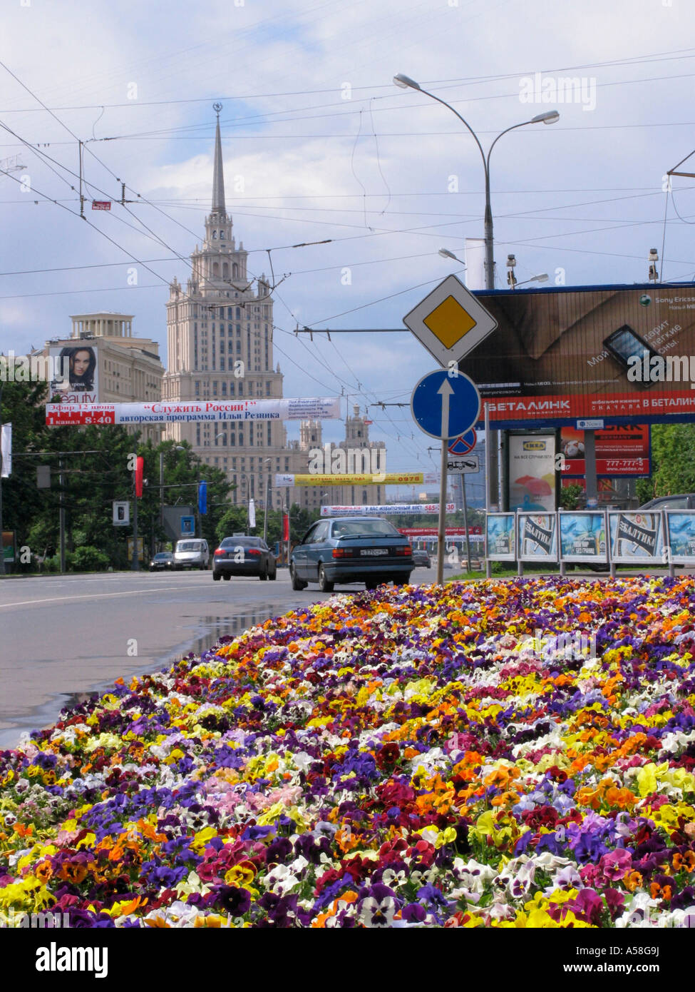 Flowerbeds in Moscow Stock Photo