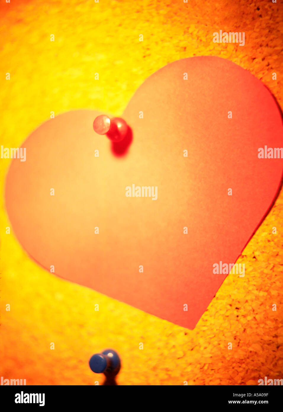 Paper heart pinned to a bulletin board - Stock Image
