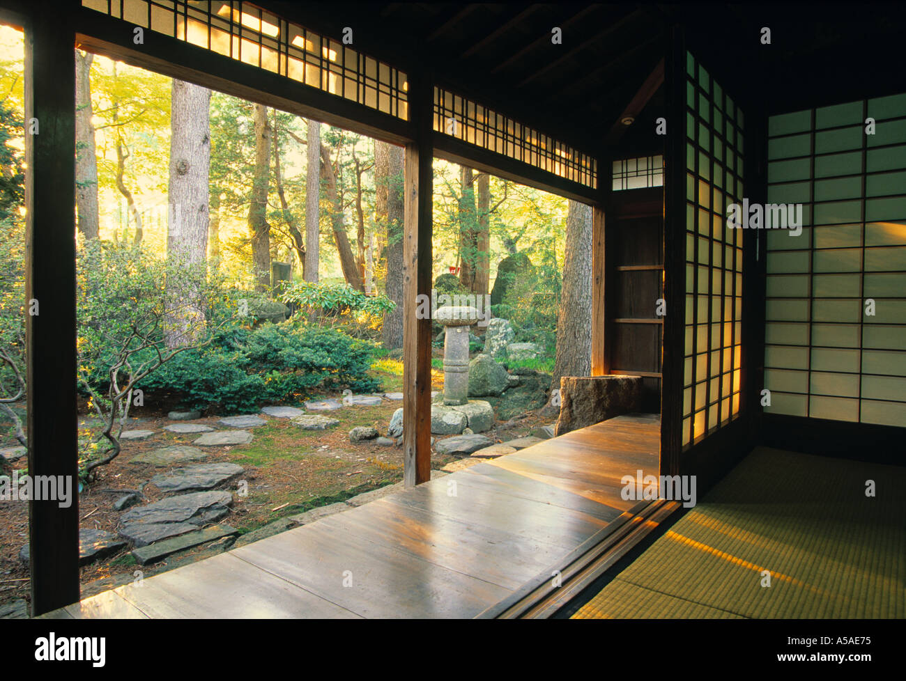 Koto, Daitokuji Temple, Kyoto, Japan - Stock Image