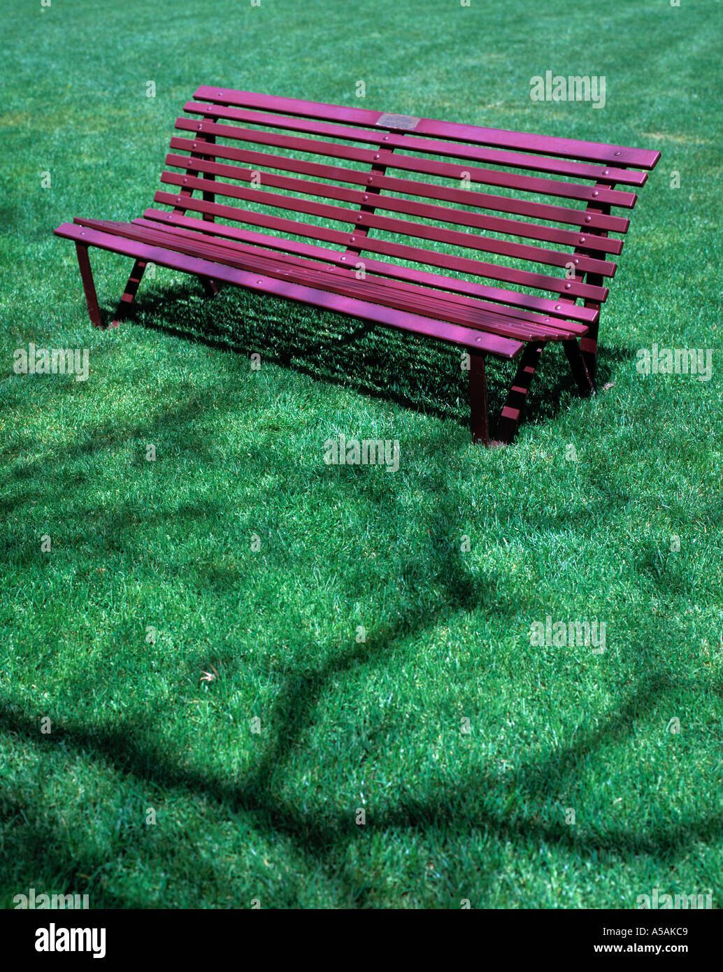 View of a empty park bench on a patch of vivid green grass - Stock Image
