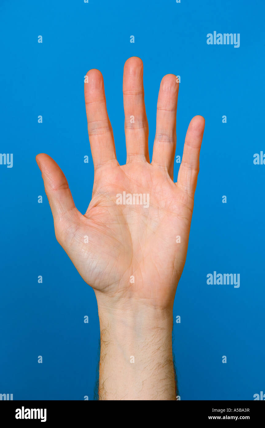 Close-up of hand out stretched on blue background. - Stock Image