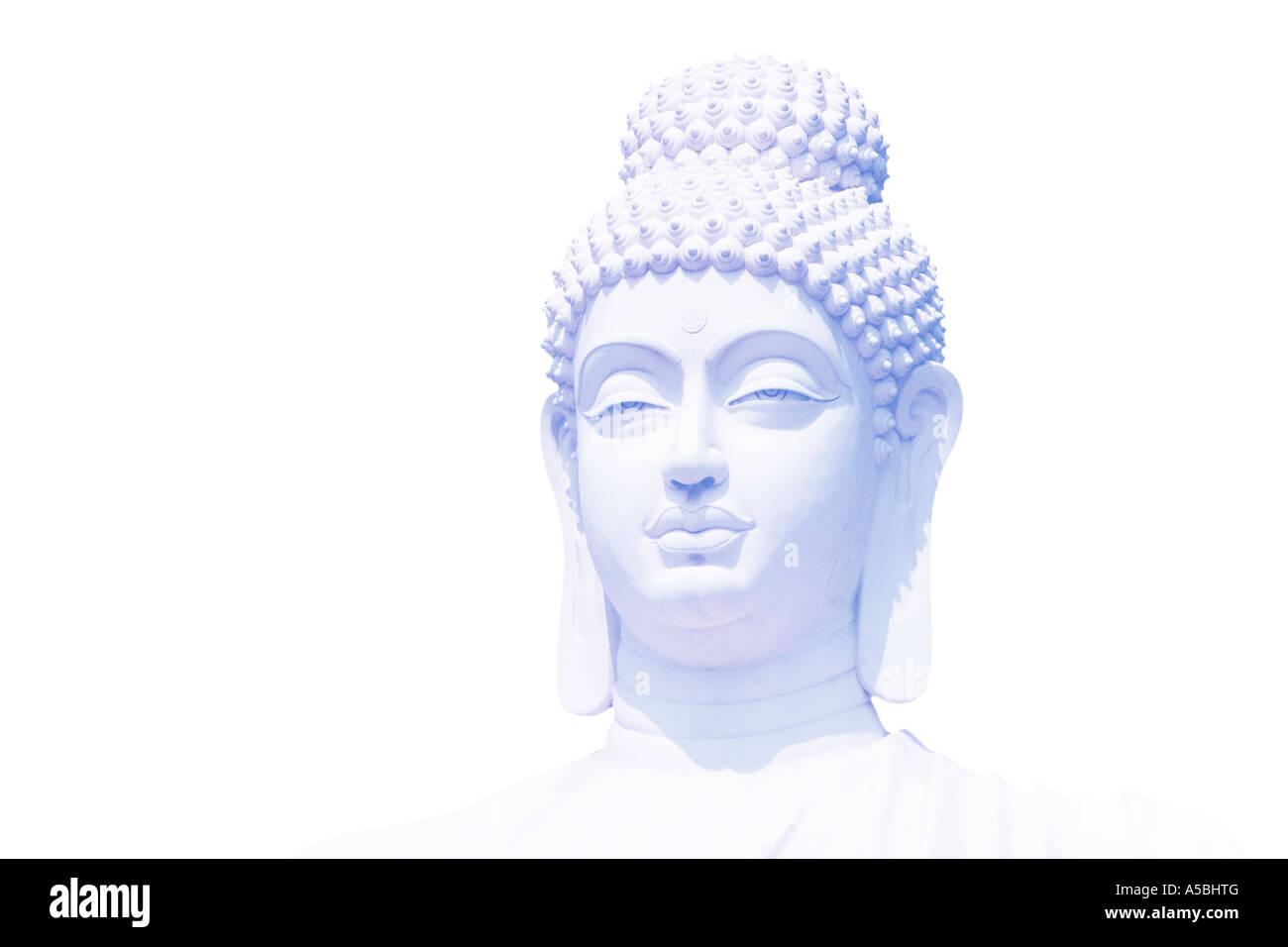 Light blue Buddha head on white background - Stock Image