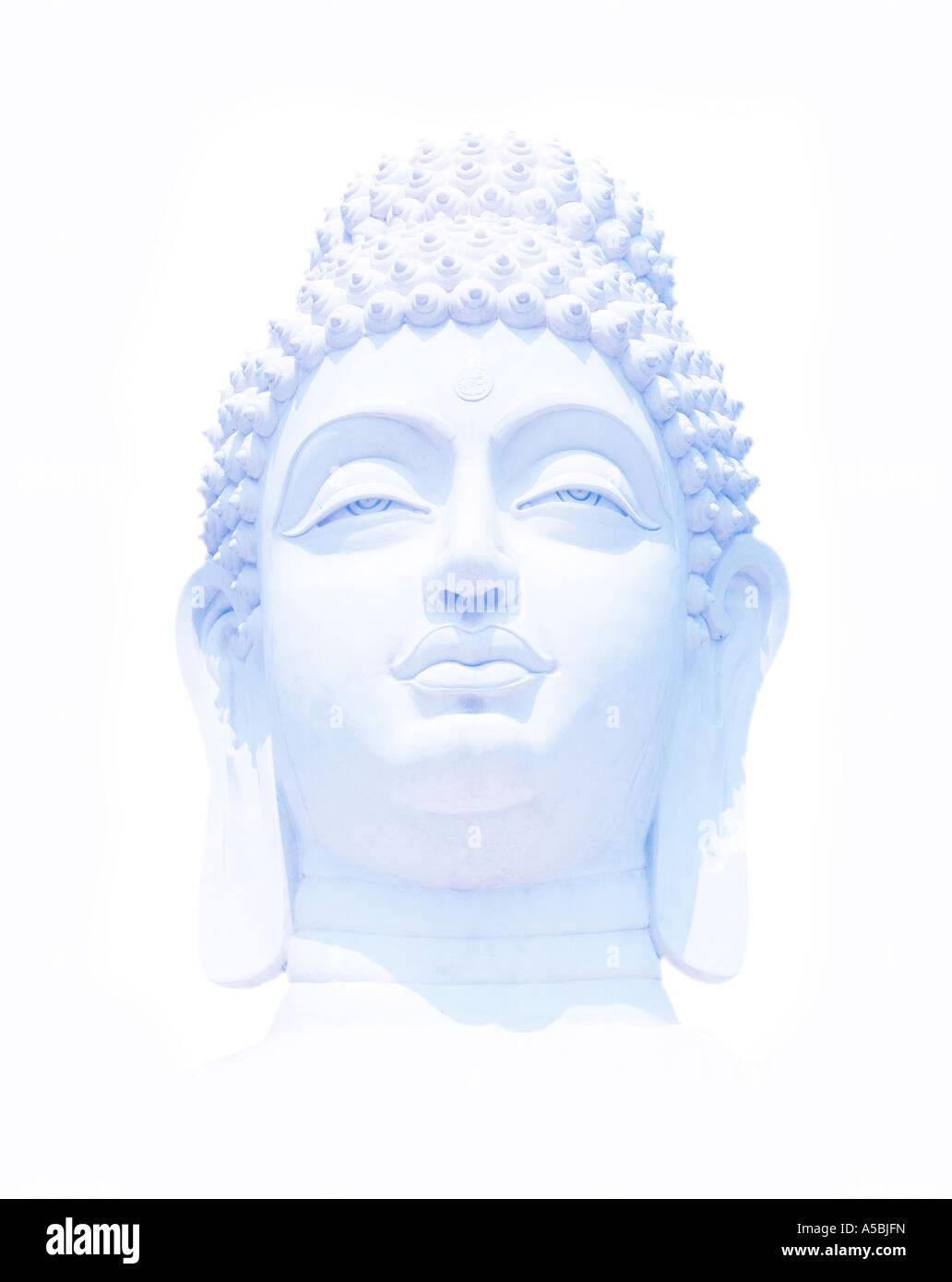 Light blue Buddha head on white. India - Stock Image