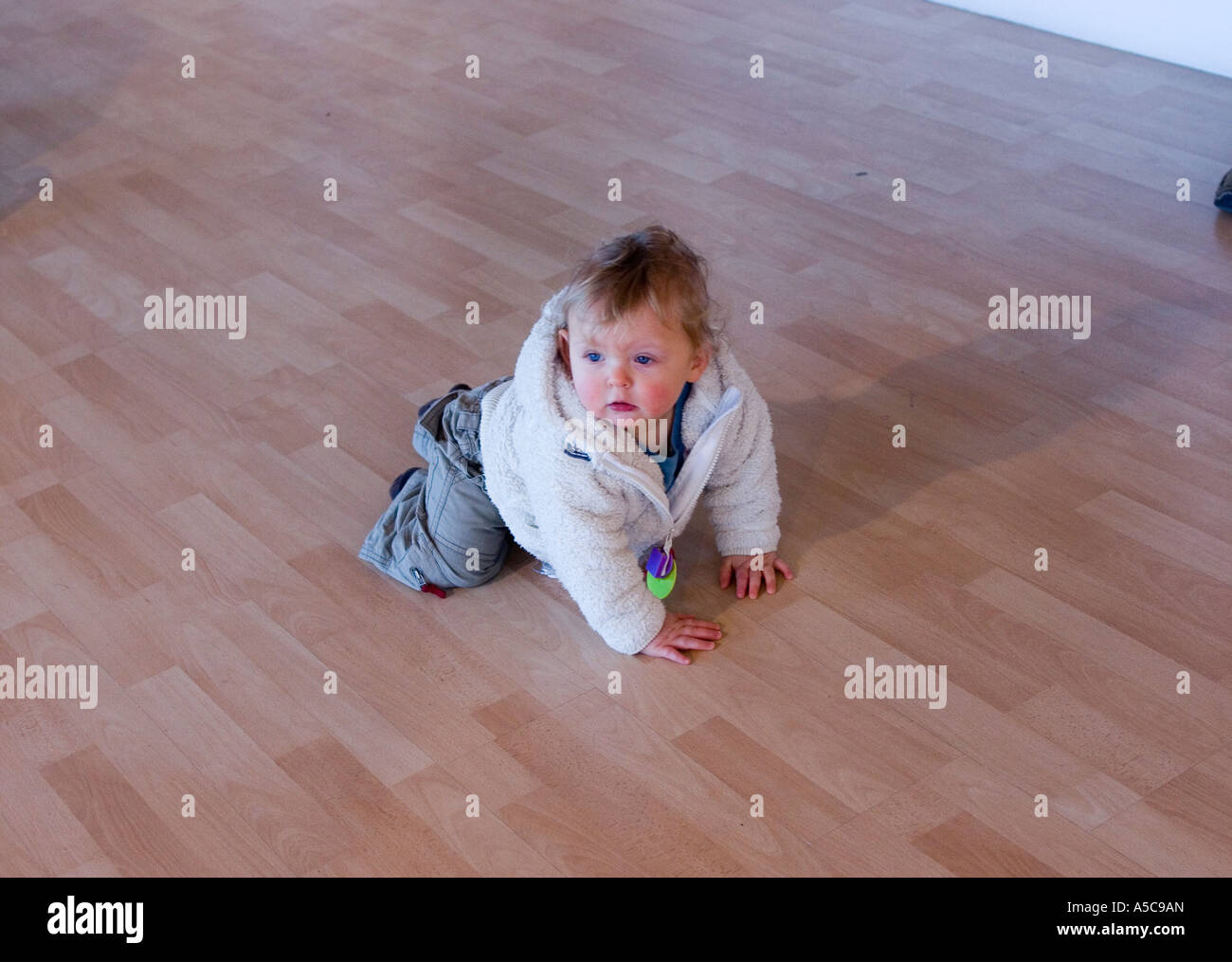 One year old baby boy playing on laminated wooden floor - Stock Image
