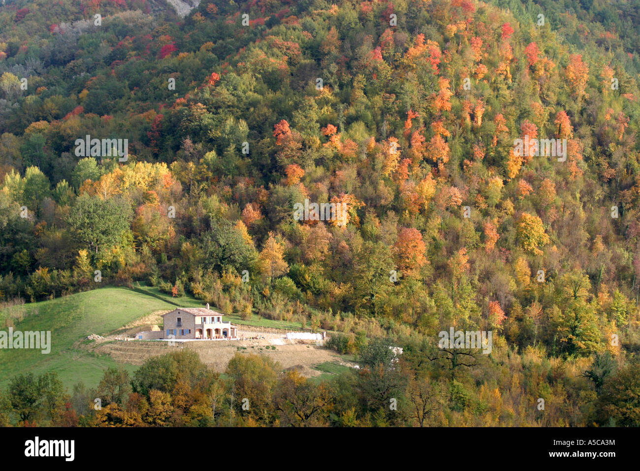 Autumn fall colors in the country side of Le Marche,Sibillini Mountains,Italy. - Stock Image