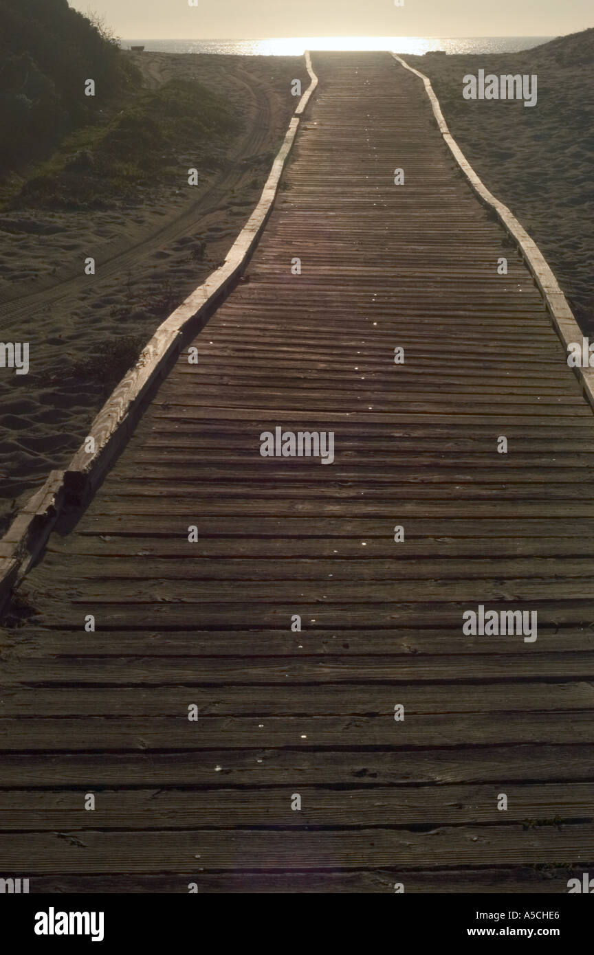 A color vertical image of a wooden boardwalk path through dunes to the ocean where the setting sun is reflecting - Stock Image