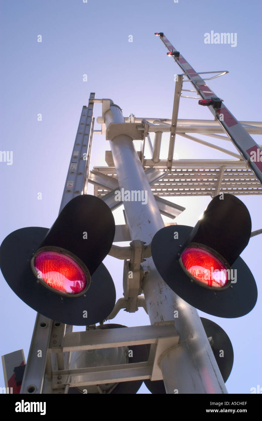 A color vertical image of railroad crossing lights with the