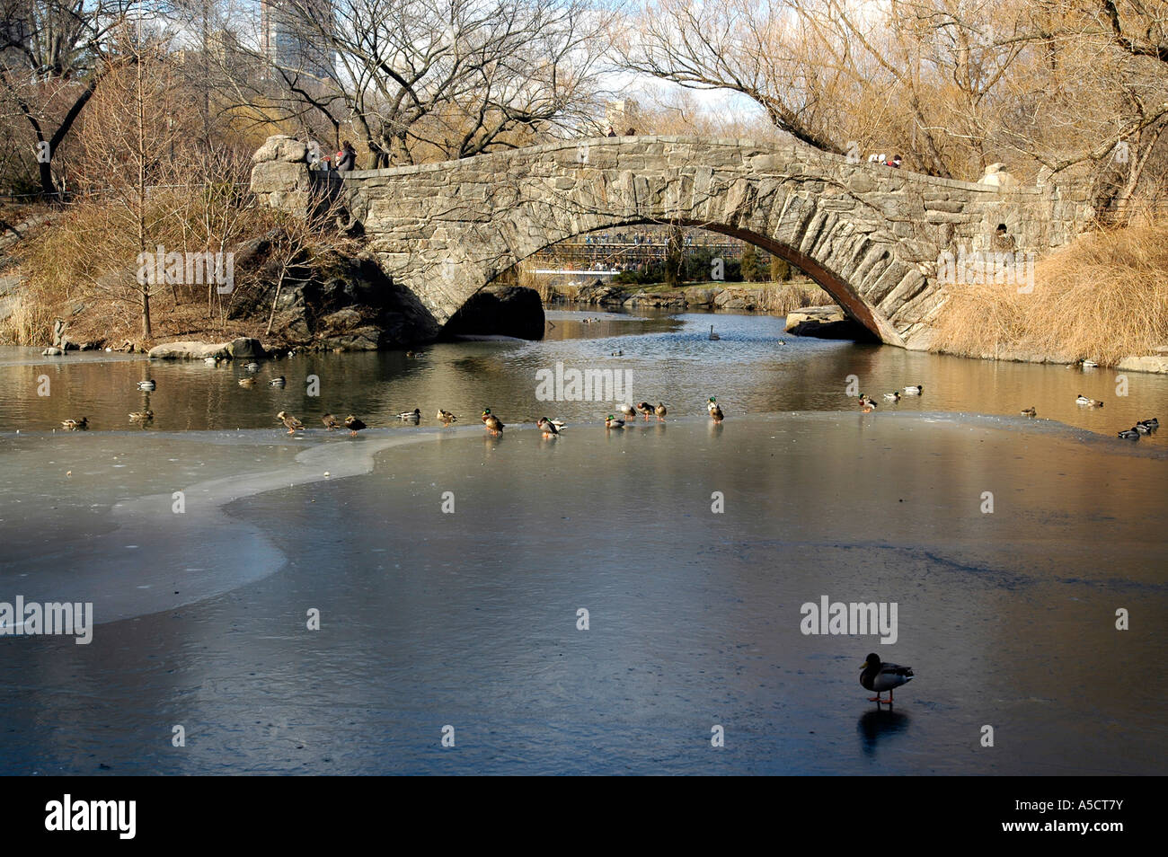 Gapstow Bridge over the frozen Central Park Pond in the winter Stock Photo