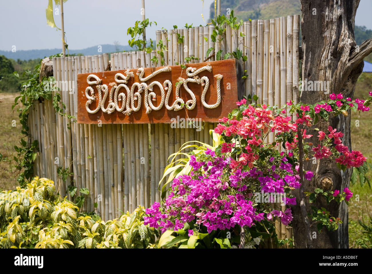 Welcome sign written in Thai Rope on bamboo fencing at