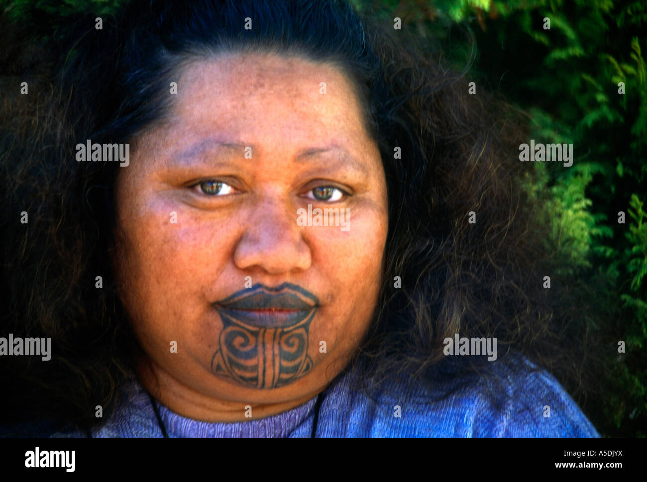 east cape new zealand maori woman with tattoo moko stock photo 11280301 alamy. Black Bedroom Furniture Sets. Home Design Ideas