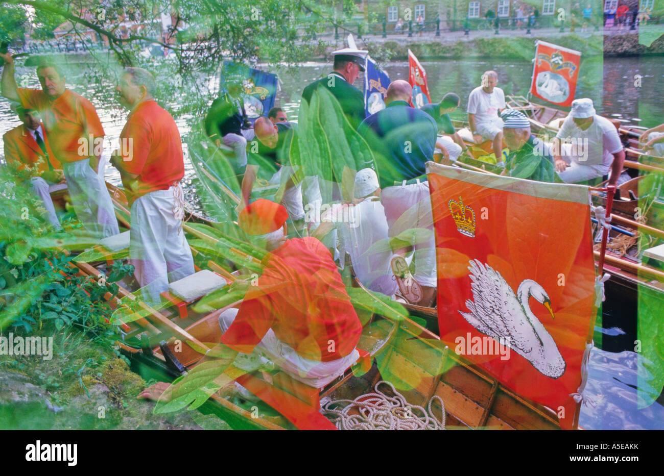 Multiple exposure on slide of Swan Upping ceremony, Abingdon-on-Thames, Oxfordshire UK with peony - Stock Image