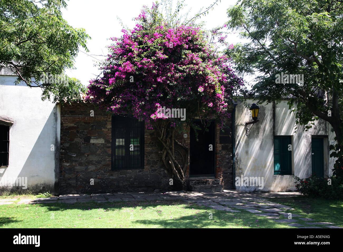 Uruguay Colonia Del Sacramento Stock Photo