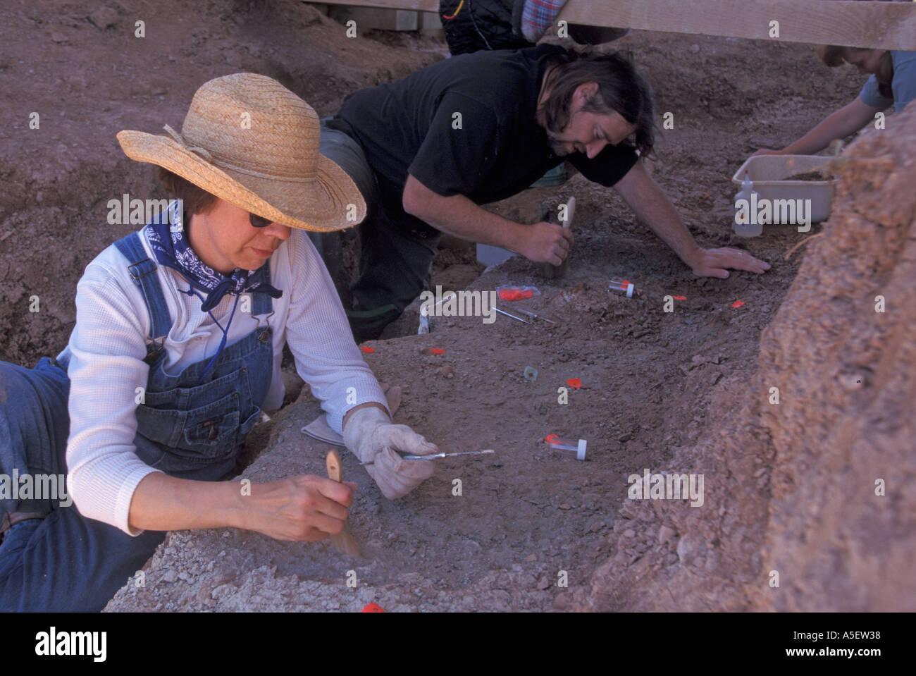 Paleontology Dig at Badlands National Park - Stock Image