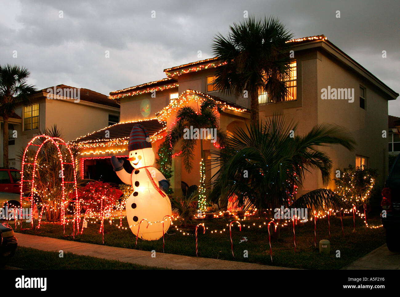 christmas decorations front garden night time twinkling lights palm tree hot weather tacky winter holiday tradition residential