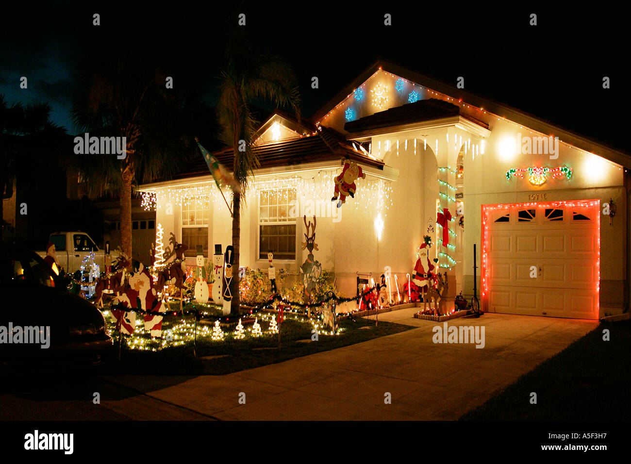 Christmas decorations front garden night time twinkling lights palm ...