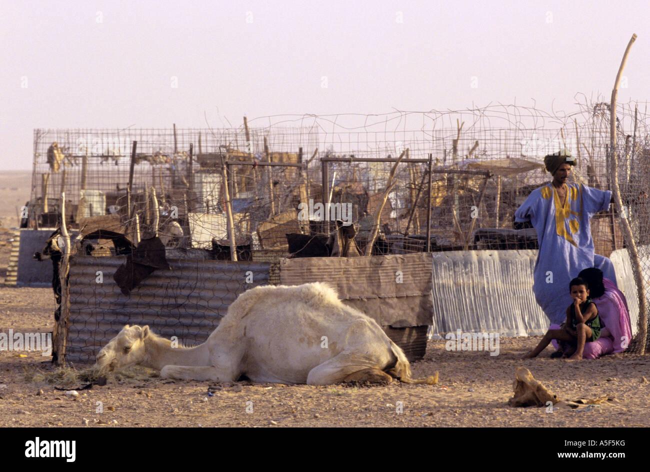 Saharawi refugees in Tindouf Western Algeria - Stock Image