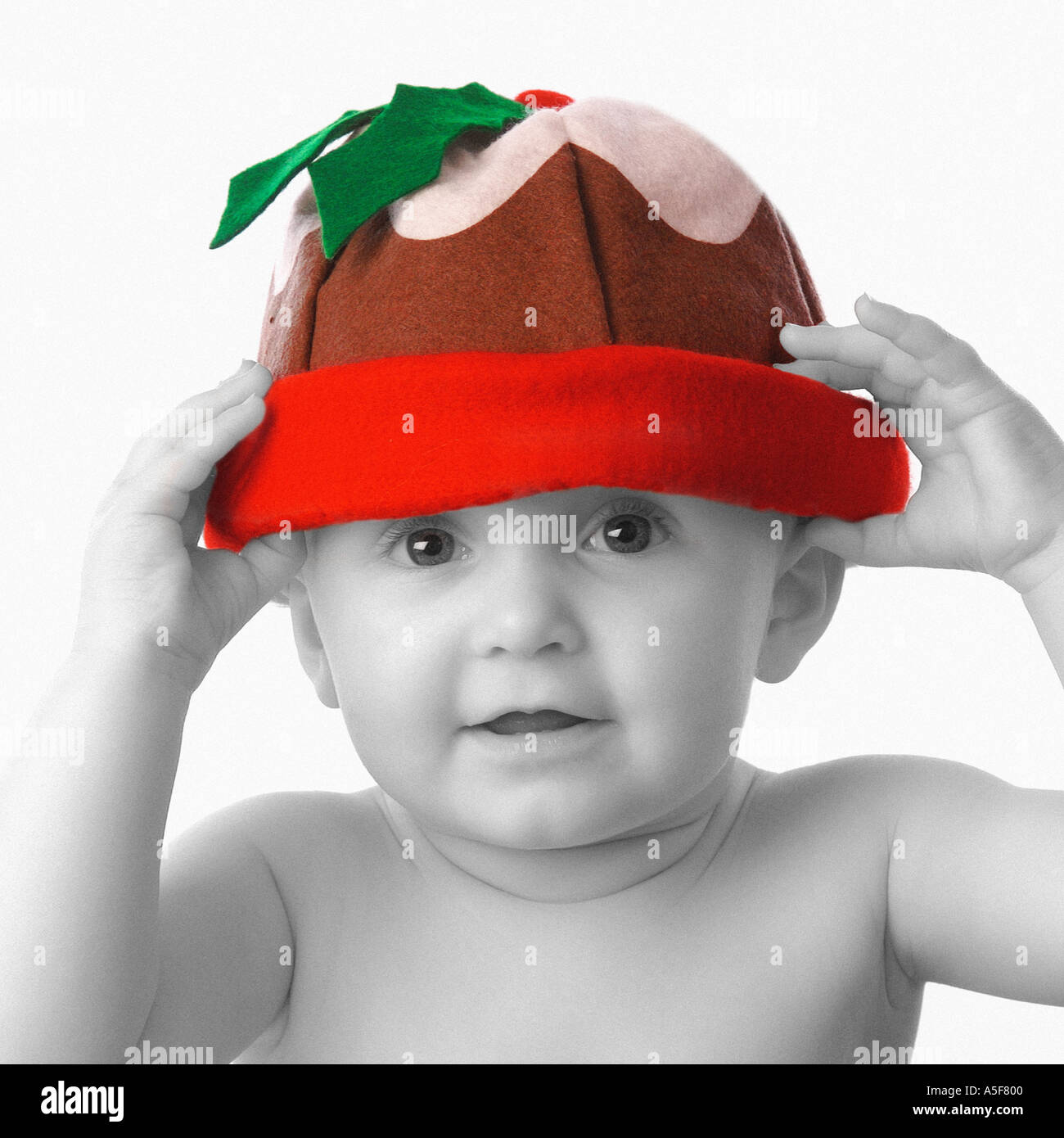 8caee6a0c81 Baby wearing Christmas pudding hat Stock Photo  391168 - Alamy