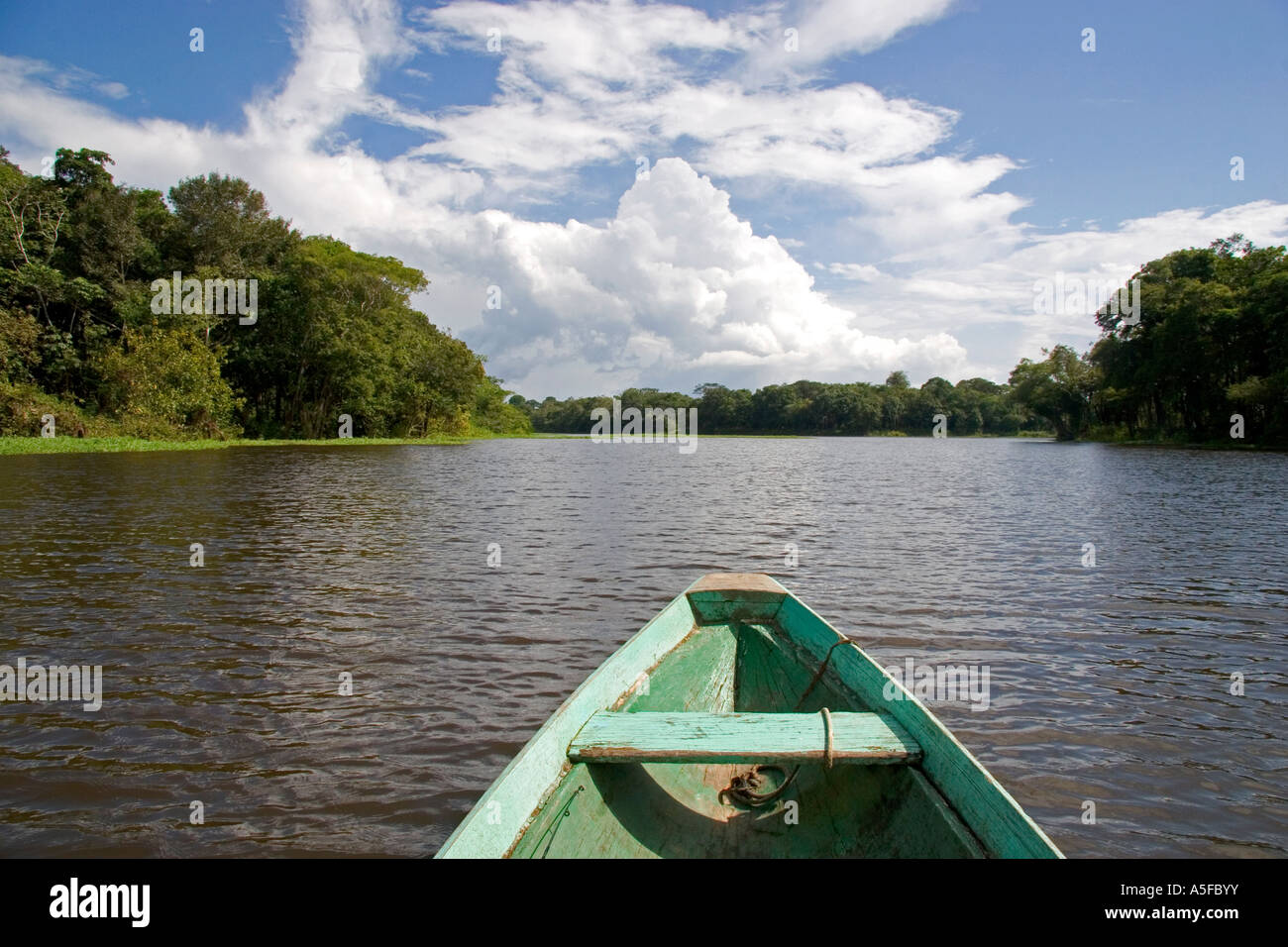 The bow of a dugout canoe on the Arasa River in the Amazon jungle near Manaus Brazil - Stock Image