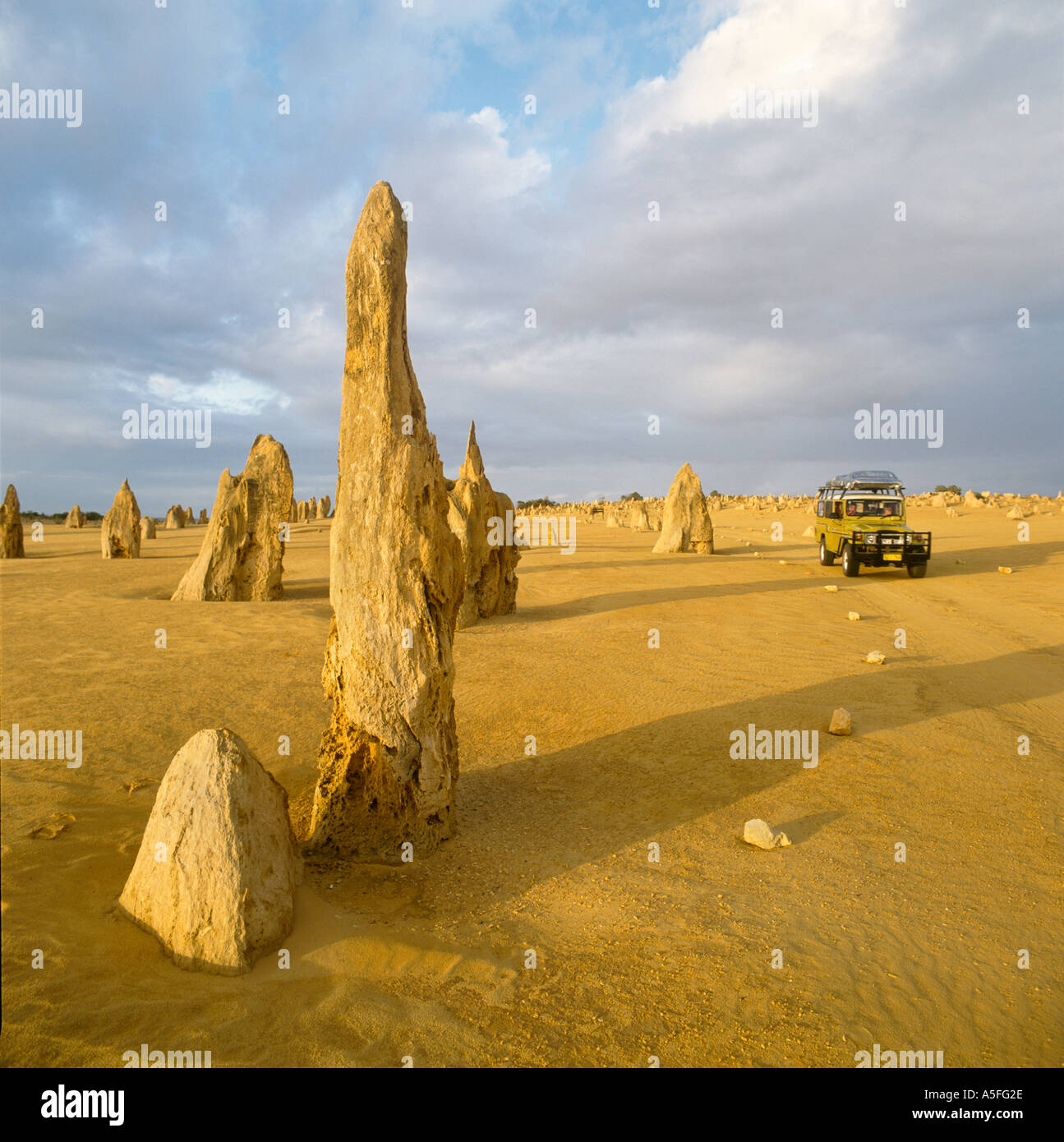 The Pinnacles in early evening light, Nambung National Park, Western Australia, Australia - Stock Image
