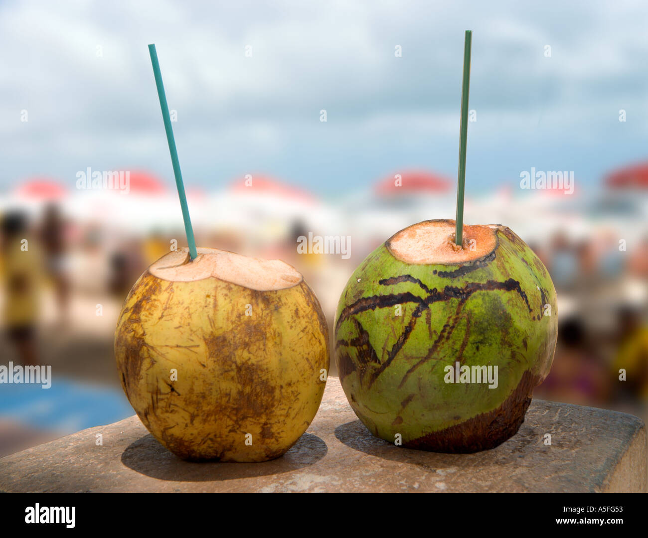 Fresh coconut milk, Ponta Negra, Natal, Rio Grande do Norte, Brazil - Stock Image