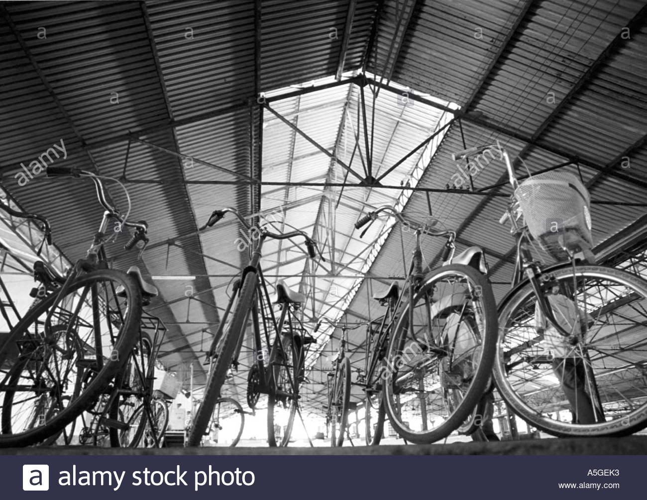 Bicycles parked in a shelter - Stock Image
