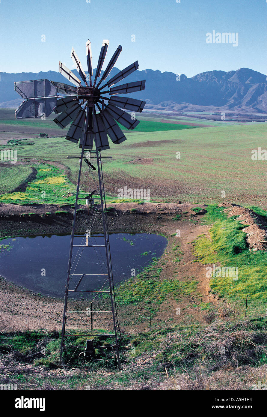 Windmill driven water pump filling a small dam in the hilly country of Langeberge Cape Province South Africa - Stock Image