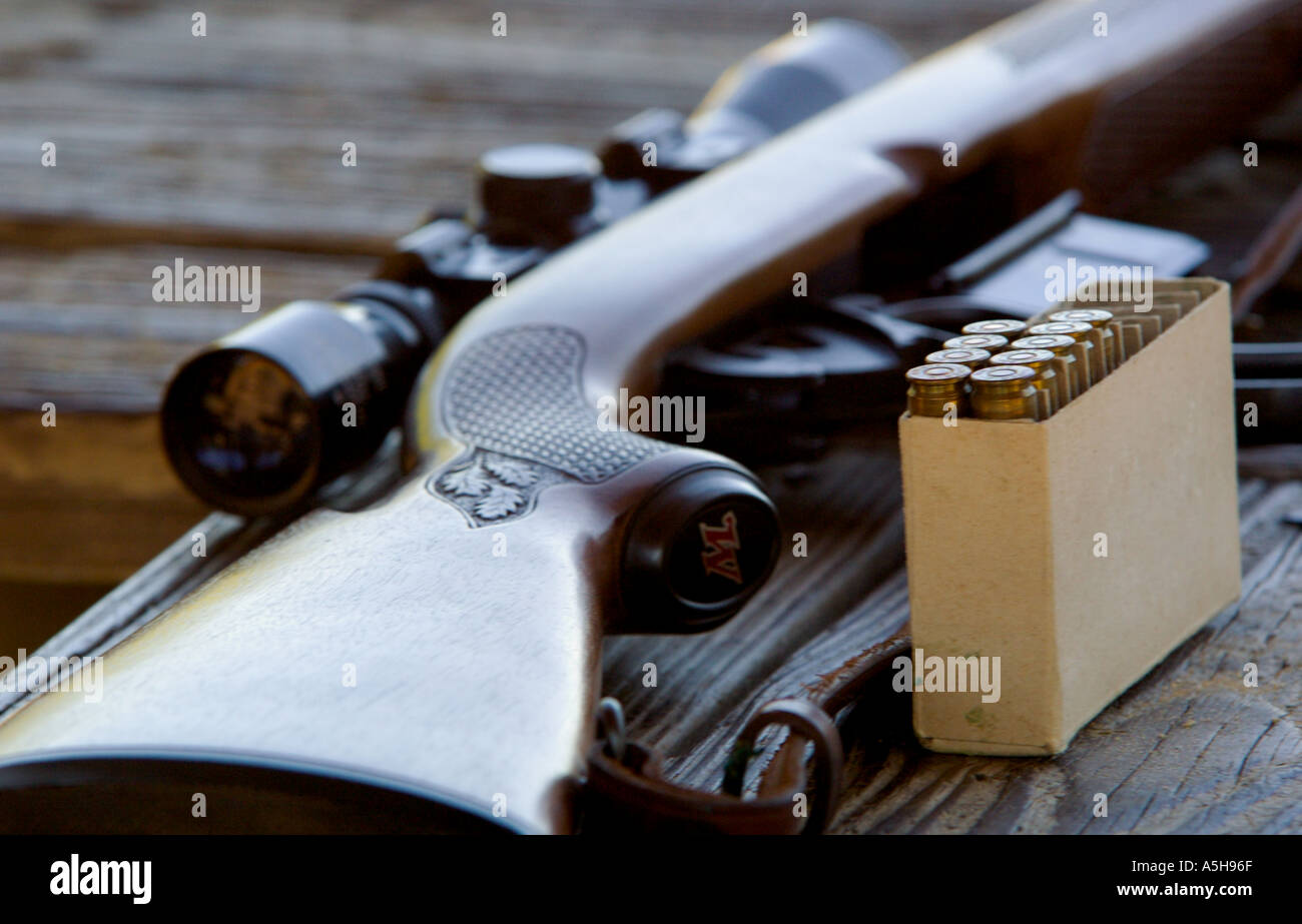 Winchester 308 caliber hunting rifle with box of ammunition at rifle target range - Stock Image