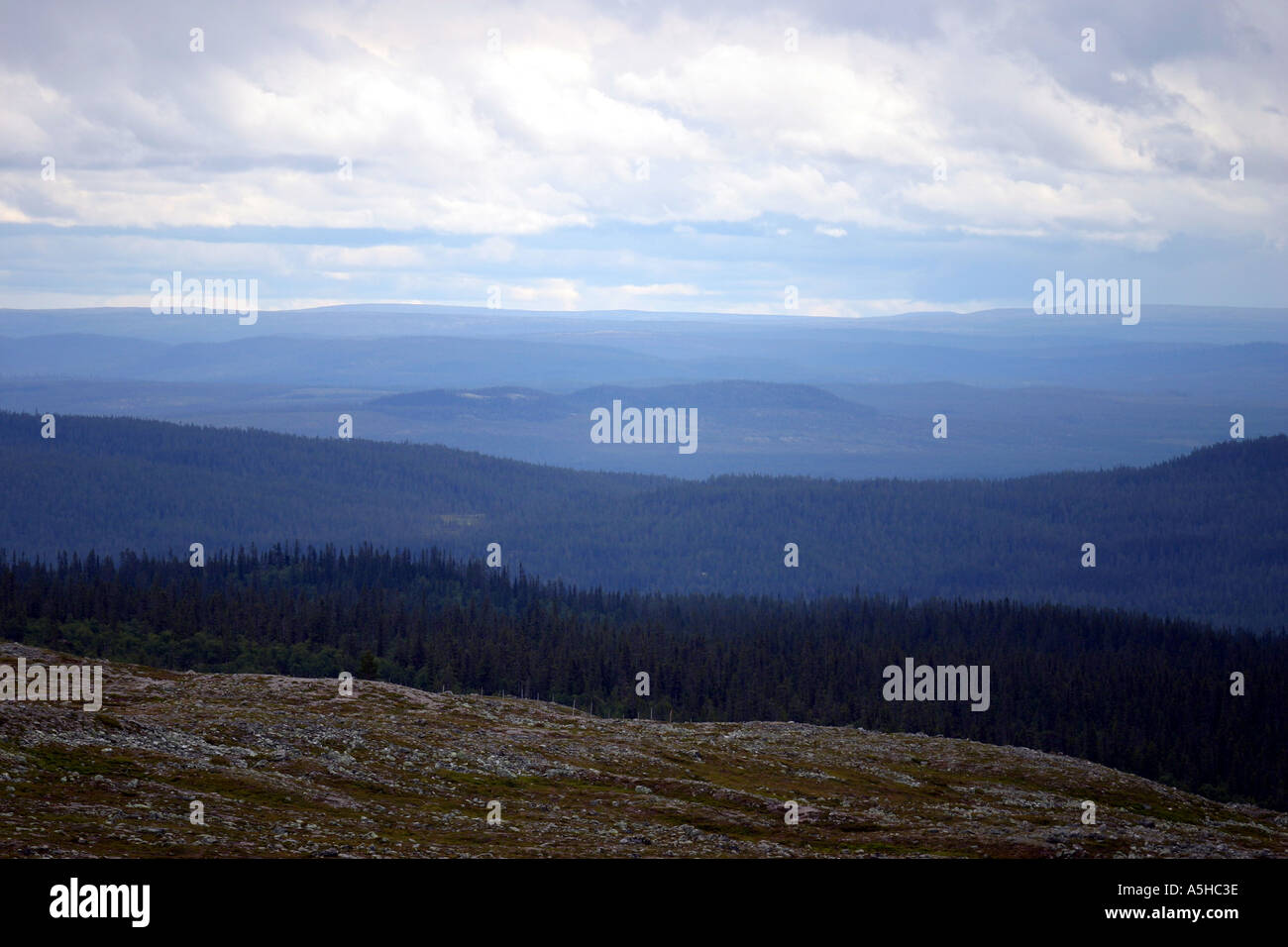 Mountains in Sweden - Stock Image