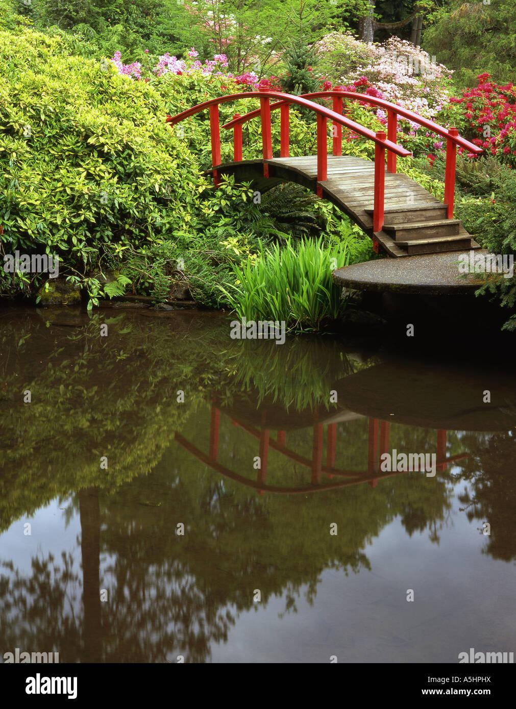 Seattle\'s Kubota Garden in spring with the Moon Bridge Stock Photo ...