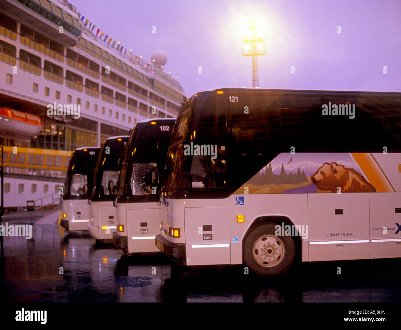 Royal Celebrity Tours motorcoaches lined up on the dock in Seward, awaiting the tourists for the trip up to Anchorage - Stock Image