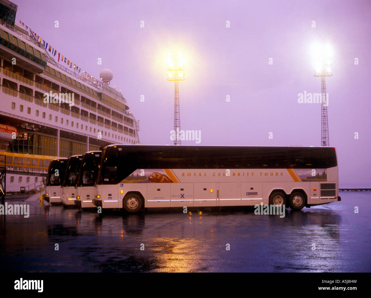 Royal Celebrity Tours motorcoaches lined up on the dock in Seward - Stock Image