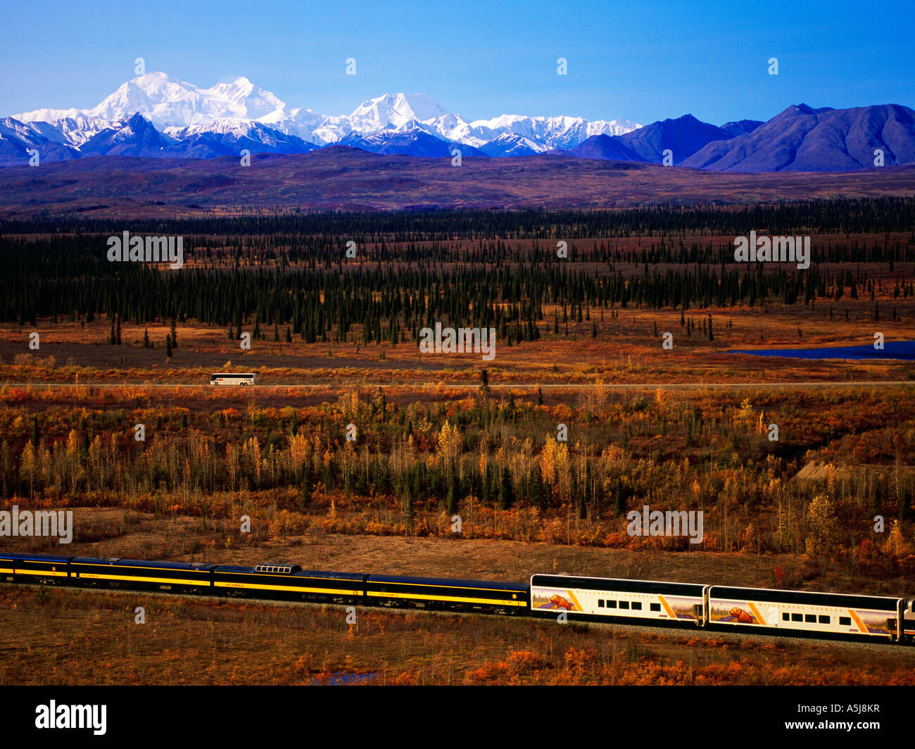 Wilderness Express Celebrity Tours, Mt McKinley - Stock Image