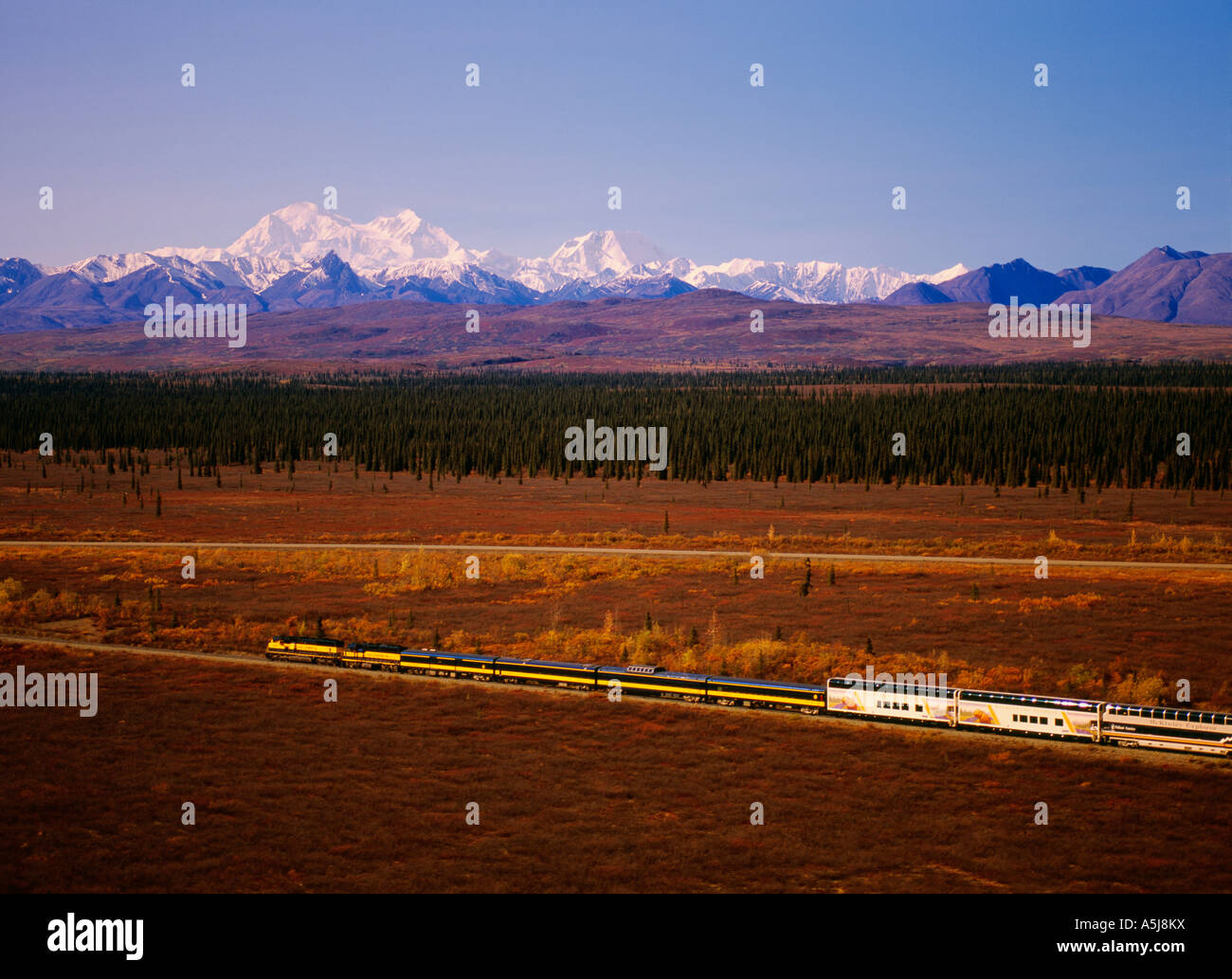 The Alaska Railroad and the Wilderness Express with Mount Denali, Denali National Park in Alaska - Stock Image