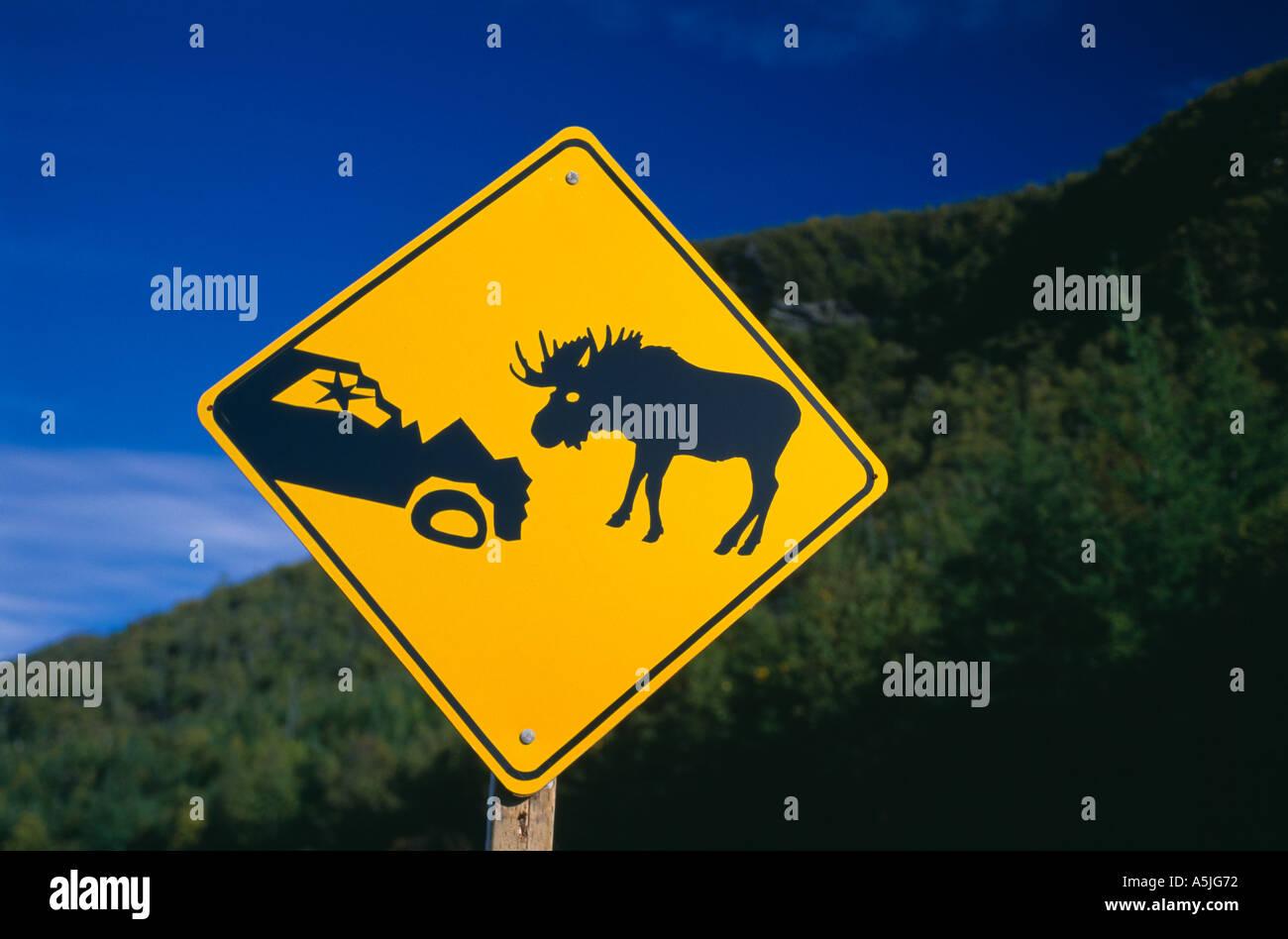 Moose Crossing Raod Sign beware Gros Morne National Park Newfoundland Canada - Stock Image